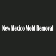 Professional Mold Removal Services in Albuquerque